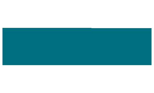 WizLAN